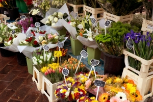 Outdoor flower market in Nice, France