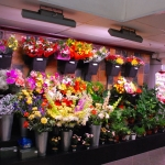 Vibrantes arreglos florales con Promolux