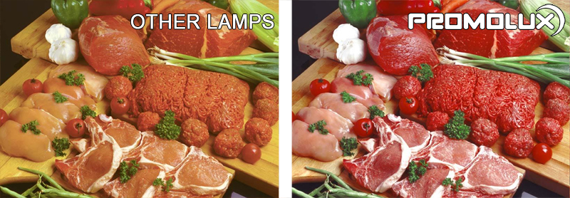 Meat and Deli Display Case Lighting - Compare meat, deli, sliced meats, prepared lunch meat lighting from Promolux LEDs versus regular lighting. Chose Promolux LEDs for your meat and deli display cases.