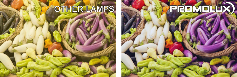 Perishable Display Case Lighting - Compare Promolux LED lights versus regular lighting to clearly see the difference with Promolux.