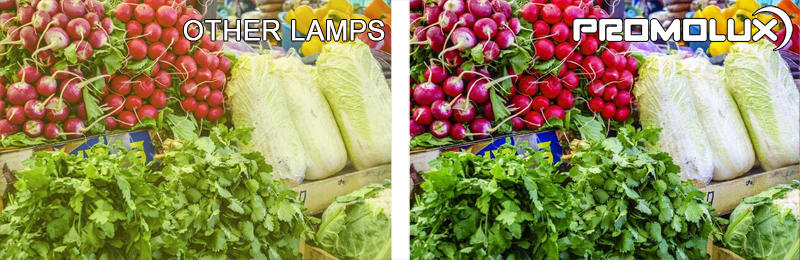 With our side by side comparison, you can see the difference between Promolux LED lights and normal lights for all fruit and vegetable perishable displays. Lower your oxidation rate, increase sales, and benefit from making the switch to Promolux LEDs today!