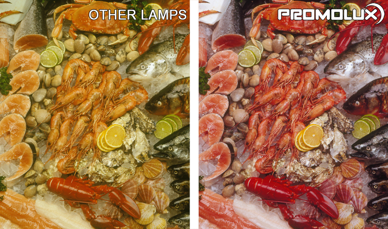 Seafood Display Case Lighting - Compare crab, shrimp, salmon, and other seafood lighting from Promolux LED lighting versus regular lighting.